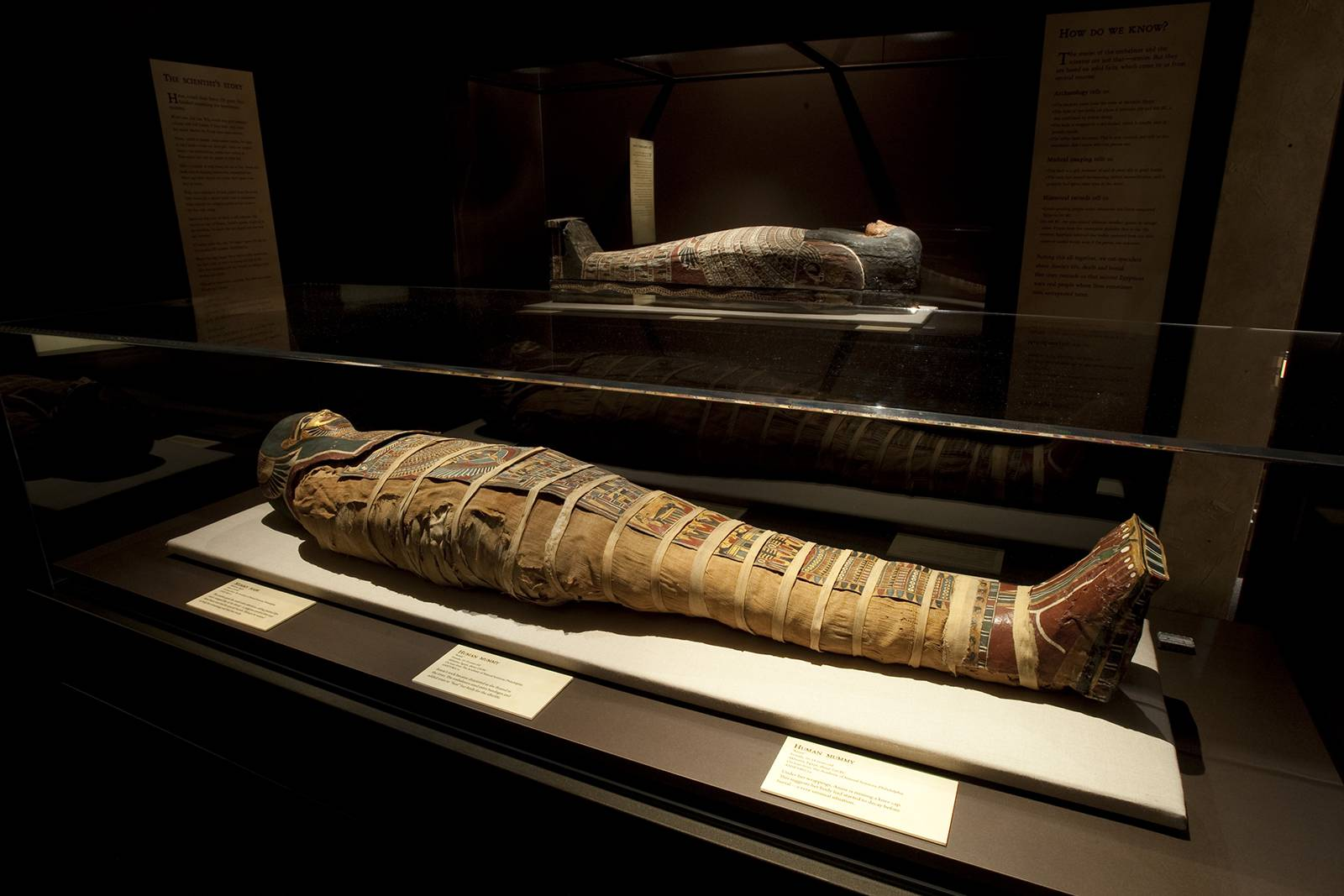 the technology of mummification Now the british museum is using the latest technology to unwrap their ancient new technology unwraps mummies' ancient mysteries the mummy of tamut.