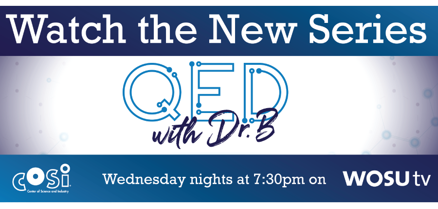 QED with Dr. B