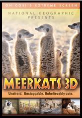 Meerkats (3D)