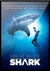 Great White Shark (3D)