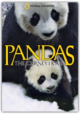 Pandas: The Journey Home (3D)