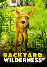 Backyard Wilderness (3D)